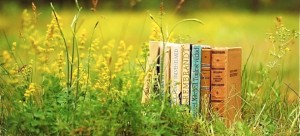 Optimized-old-book-pasture-wall-inkbluesky